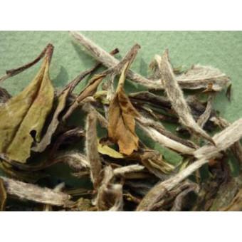 Купить Белый чай Бай Му Дань «Белый Пион»