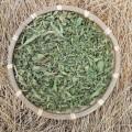 Купить Мята Марокканская сушеная 100гр