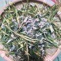 Купить Чайный купаж «Мятный Бамбук» из листьев бамбука с белой мятой 6 гр