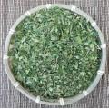 Купить Тайский нечайный чай Моринга