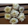 Купить Цзюй Хуа, или Цветы хризантемы