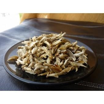 Я Бао «Зимние почки дикорастущих чайных деревьев»